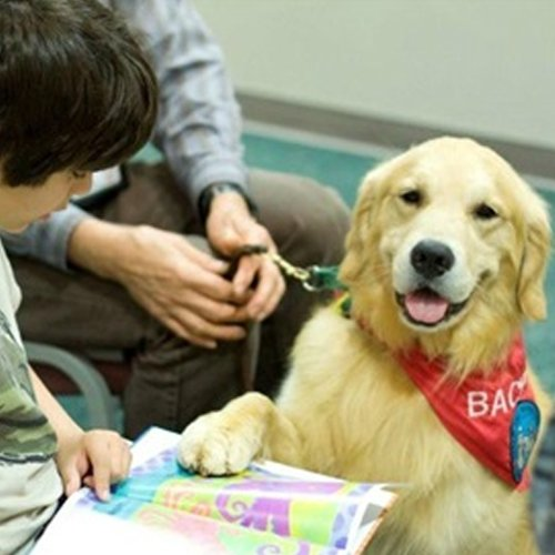 Happy Dog image of Golden Retriever reading a book with children