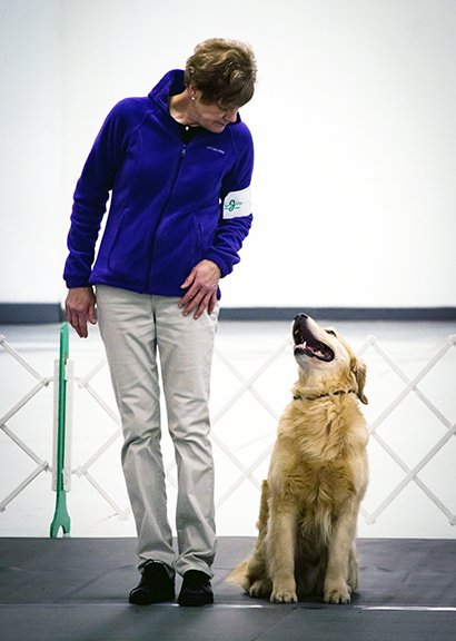 Sidebar image of Ellen & Golden Retriever by her side sitting